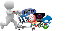 Web Design and Hosting comperfect-Russia